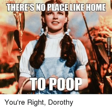 You Re Right Meme - theres noblace like home to poo you re right dorothy