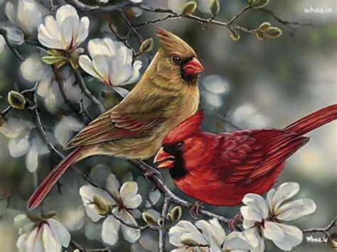 nightingale hand painting hd wallpaper