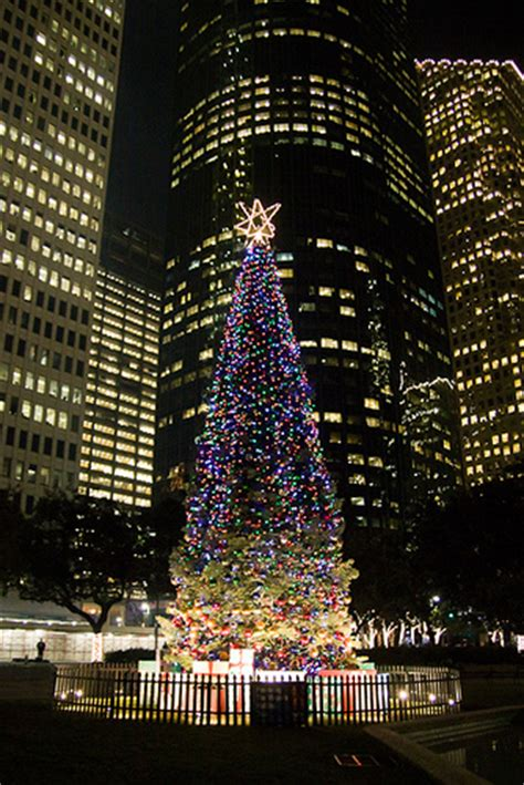 28 best christmas tree in houston a holiday giant