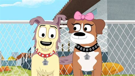 pound puppies episodes pound puppies at shelter 17 shout factory