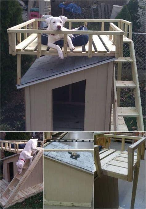 construisez une niche pour chien super originale