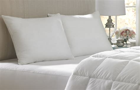 bedding and pillows information