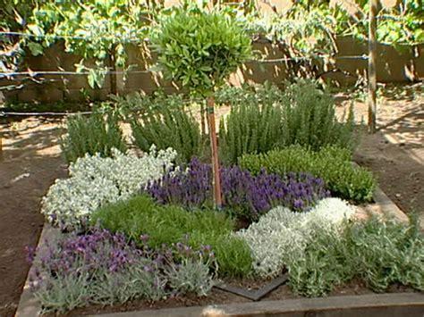 herbal knot garden  tos diy