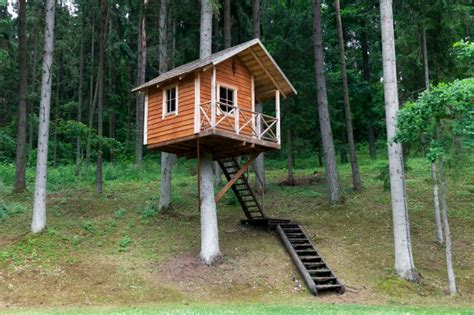 Duplex Plans That Look Like Single Family by 25 Awesome Kids Tree Houses Kids Activities Blog