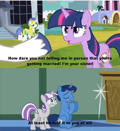 Funny Pony Memes - pin funny mlp memes on pinterest