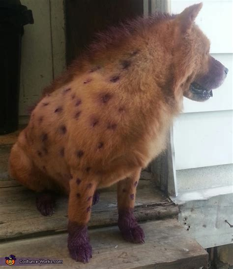 cartoon hyena dog costume