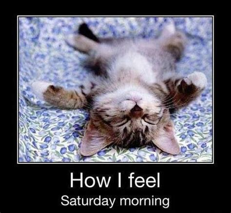 Working Saturday Meme - quotes about working on saturday quotesgram