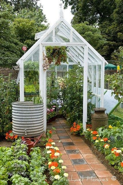 greenhouse in the backyard outdoors