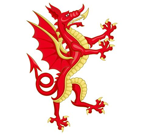 coat of arms with dragon