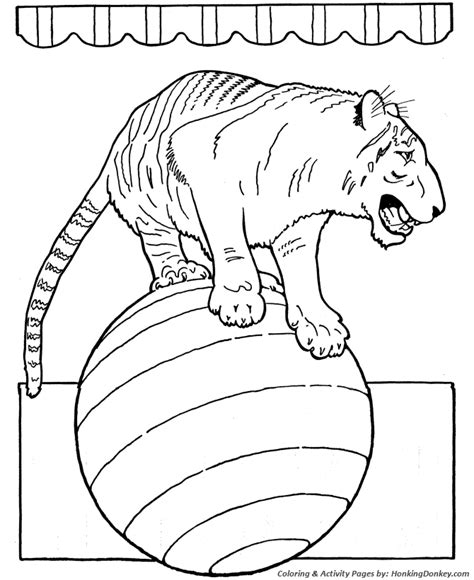 Circus Animal Coloring Pages circus animal coloring pages printable performing circus