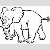 elephant-clipart-free-elephant-clipart.png
