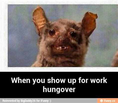Hungover Meme - hungover ifunny