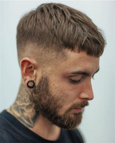 3 Great Exles Of A Crop Haircut by Best 25 S Haircuts Ideas On