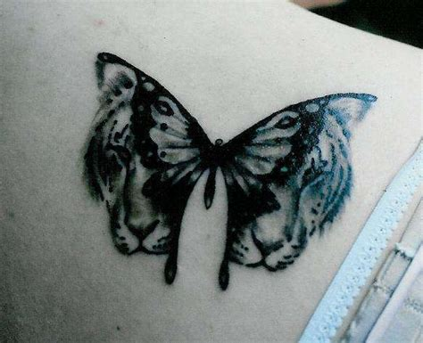 tiger butterfly tattoo butterfly tiger ideas