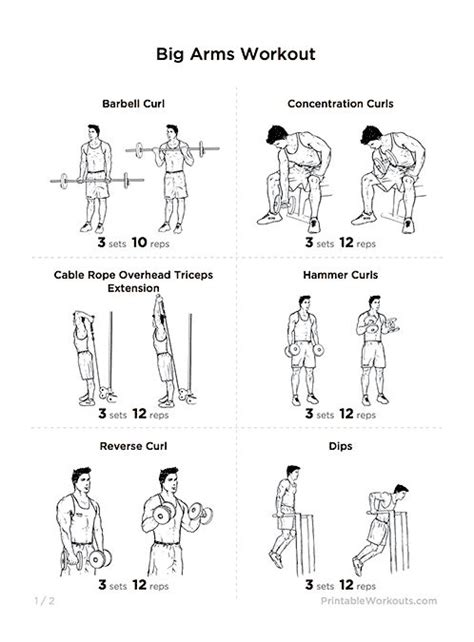 best exercises for big biceps best biceps workout for for beginners tips big arms workout biceps