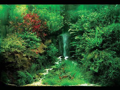 waterfall aquascape dutch style aquascape with sand fall nature tank