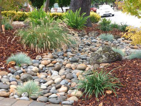 front yards low water landscape design sacramento bathroom garden trends