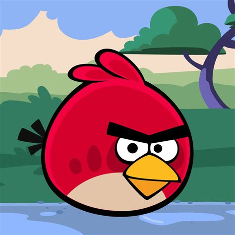 angry bid angry bird angry birds picture