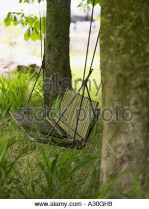 swing hanging from tree empty swing stock photo royalty free image 310112425 alamy