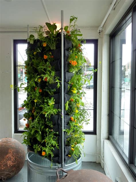 Indoor Vertical Garden by Vertical Aquaponics City Dwelling Vegetable Farming