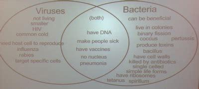 venn diagram of virus and bacteria biology carr science 12 13