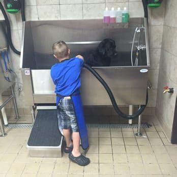 pet supplies plus wash erin w s reviews plano yelp