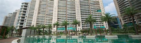 dlf magnolias 5 bhk pent house apartment for rent
