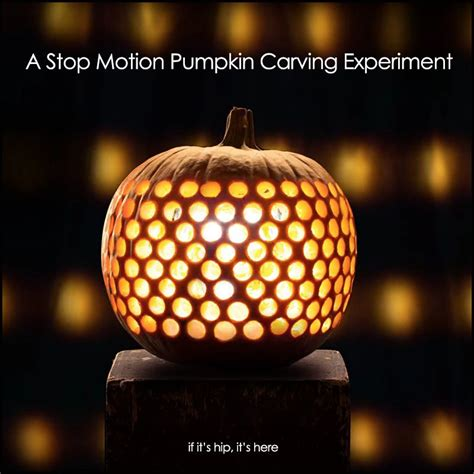gourd  stop motion pumpkin carving experiment