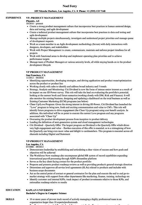 Product Management Resume by Vp Product Management Resume Sles Velvet