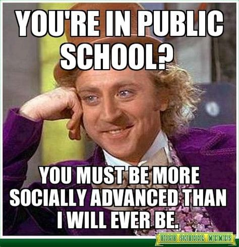 Public School Meme - 153 best homeschool humor images on pinterest