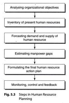 human resource planning diagram steps in human resource planning explained with diagram