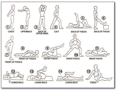 Safe Exercises For Lower Back Some Stretches Backinmotion Us Backs In Motion