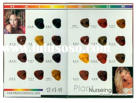 loreal hair color wheel loreal professional hair color chart cachedrss statuses