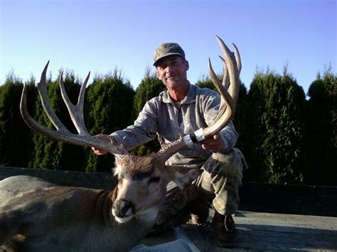 Washington Records Archery Mule Deer Country