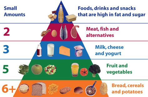 food for children healthy food pyramid for nutrition