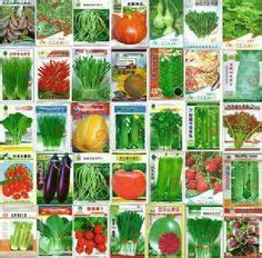 types of garden vegetables 1000 images about balcony vegetable garden on