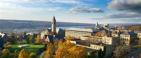 Cornell Mba Board by Cornell To Establish An Integrated College Of Business