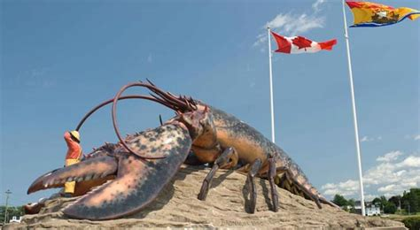 world s heaviest the world s largest lobster