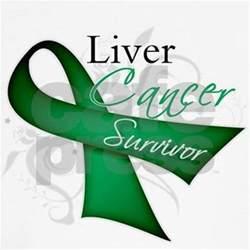 liver cancer ribbon color survivor ribbon liver cancer baseball jersey by hopeanddreams
