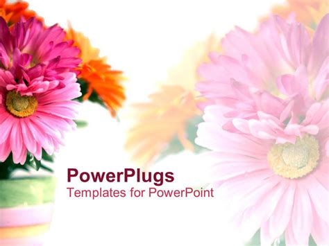 Powerpoint Template Floral Theme Showing Bouquet Of Pink And Orange Carnations On White Flower Powerpoint Template