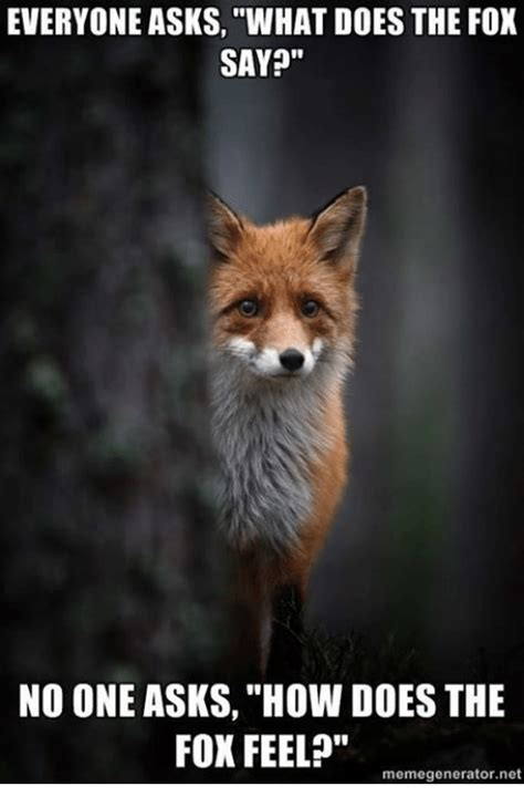What Does The Fox Say Meme - 25 best memes about what does the fox say what does the