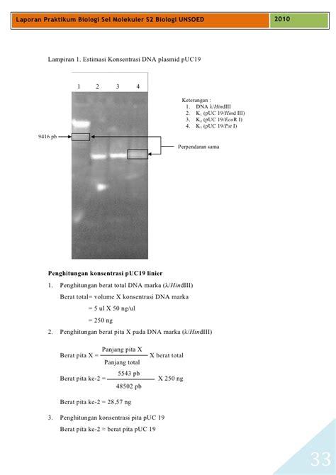 cara membuat laporan praktikum biologi sel laporan praktikum biologi sel molekuler