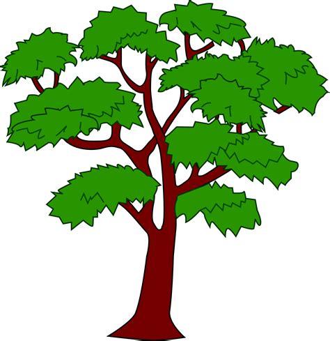 tree clip clipart mahogany tree