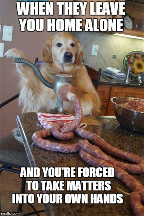 Dog Cooking Meme - home alone imgflip