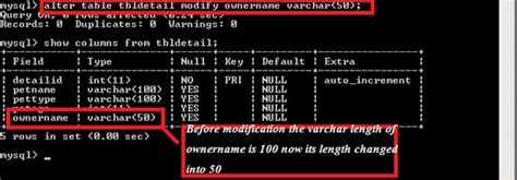 mysql alter table add column exle mysql statements by the command prompt