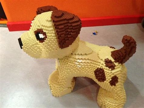 lego puppy lego puppy picture of vaughan ontario tripadvisor