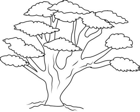 เร ยนภาษาอ งกฤษ ความร ภาษาอ งกฤษ ทำอย างไรให เก งอ งกฤษ Tree Coloring ñ A4 22 Pages