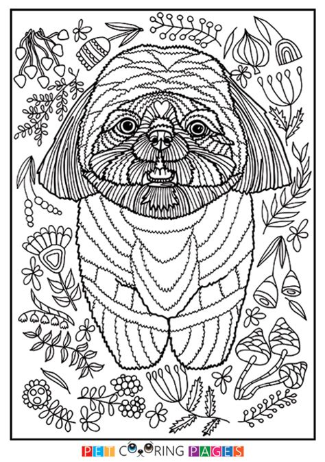 coloring pages of shih tzu dogs shih tzu coloring page quot dougie quot zileart