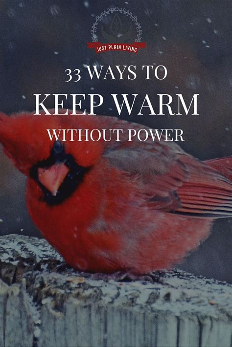 Keep Your Warm With Apowerbrick by 33 Ways To Keep Warm Without Power Winter Homesteads