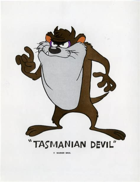 Tasmanian She Pictures clip characters tasmanian she taz